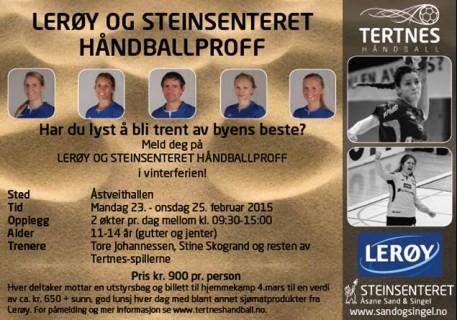 HåndballProff2015 (2)